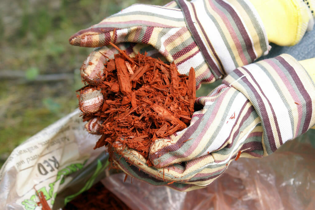 Mulching-services-Cape-coral